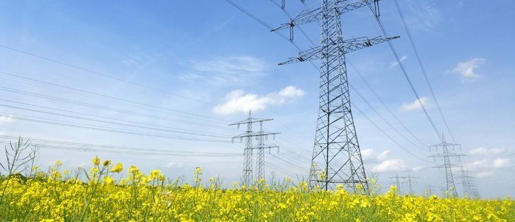 Expropriating land for such uses as power line construction has been a hot button issue in Alberta.  |  File photo