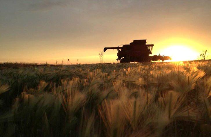@bihslicksprayin - Another beautiful sunset, wrapping up some wheat swaths #todaysharvestimage by @bihslicksprayin pic.twitter.com/sbOMSsopLV