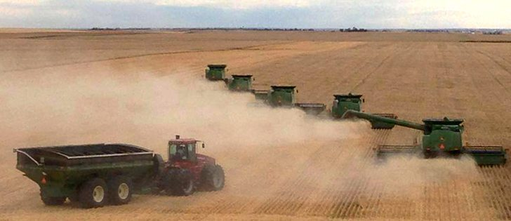 Scott Mckenzie Dugdale farms from Pense saskatchewan.