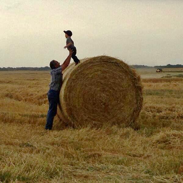 Kristjan Hebert @KristjanHebert @westernproducer supper break fun! #harvest13 pic.twitter.com/qd2AIbfFFD