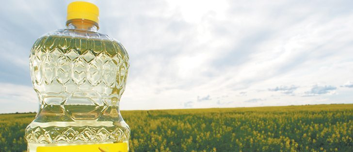 The Saskatchewan Canola Development Commission has passed a resolution to determine whether farmers should push for premiums based on oil content of their canola. | File photo