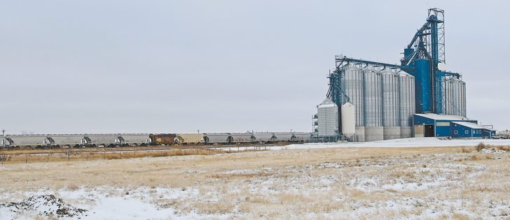 A law passed last year designed to improve service for railway customers has delivered no noticeable benefits for Canada's agricultural shippers, says an executive with the Western Grain Elevators Association. | File photo