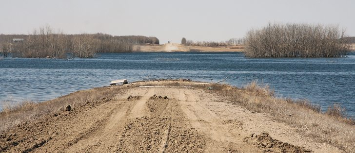 Grid 639 north of Lestock toward Wishart, Sask., used to run straight north but water has taken over. It's a sign, says Gerald Faye, of a much higher water table and wetter years. | Karen Briere photo