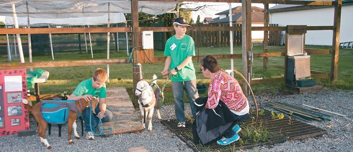 Seth, left, and Ethan Wildboer of the Fraser Valley Footprints 4-H Club take their goats through their paces for Saskatchewan's Cindy Cooper during 4-H Canada's Night in the Country event at Pitt Meadows, B.C. | Karen Morrison photo