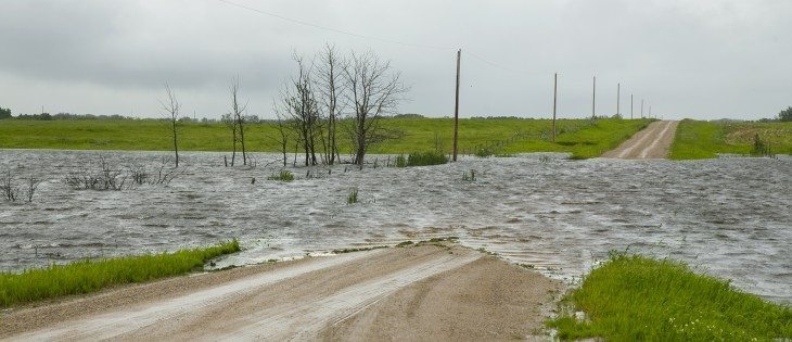 Heavy rains have flooded large areas of farmland. Approximately 3 km west of Leross, a grid road is underwater on the north side of the highway.  |  Robin Booker photo