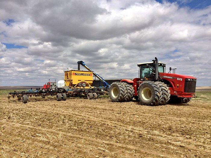 Clayton Schmidt‎ Plant 14. Venture Ridge Farms, Glentworth SK