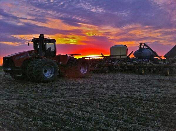 Brett Blaquiere ‏Blackie Early morning riser. @The Western Producer #plant14