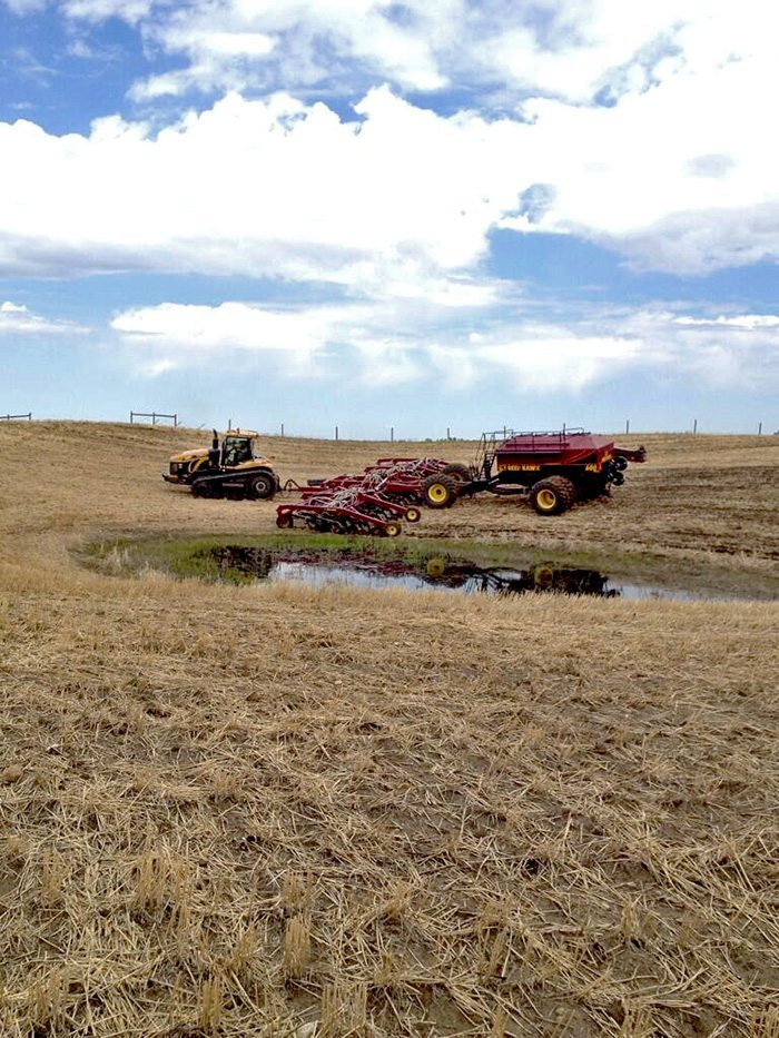 MICHEAL WIPF ‏@Micheal B Wipf Putting the final touch in #plant14 #hawksightings @The Western Producer @DowAgroCA_SC #finalfieldafterthebigrain