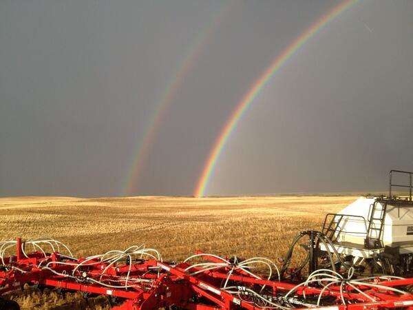 Brendan Miller @Brendan Miller @The Western Producer Double rainbows mean big yields!!! #raindelay #rockhaven #plant14