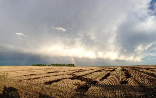 Mike Raine ‏@MikeJRaine Nice night for seeding. Too bad it's June. @The Western Producer #westcdnag #ontag #agchat
