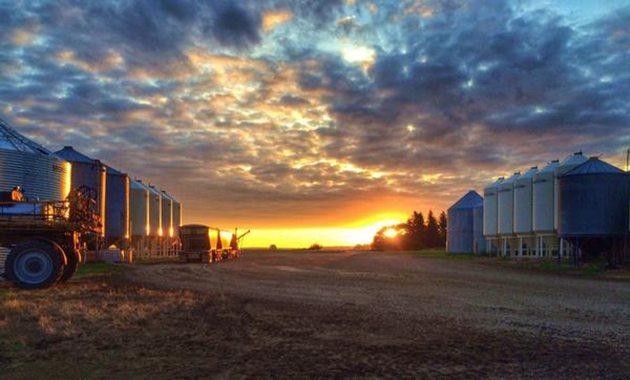 Sarah Schultz @NurseLovesFarmr Goodnight, farm. Pic by @WheatlanderJay edited by me @westernproducer #harvest14
