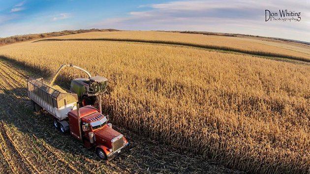 Jason Whiting @whitingjj Little by little! #harvest14 @westernproducer @790CFCW @LLOYDFM @CBCSask @JHougham #Lloydminster