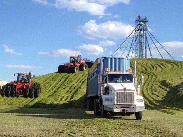 RB @CDNrunny @westernproducer #harvest14