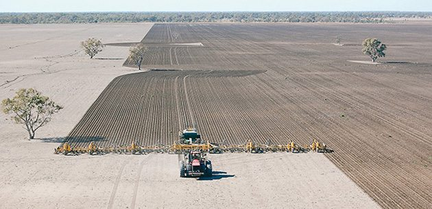 Multi Farming Systems builds complete machines up to 160 feet wide. This one is fed by a single Simplicity cart. | Multi Farming Systems photo.