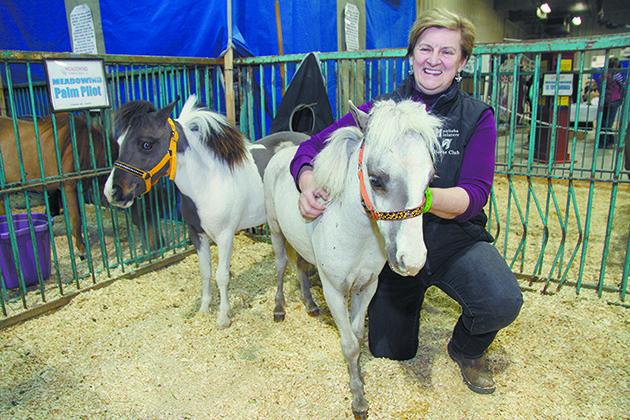Heather Hart admires Palm Pilot, a yearling miniature horse on display at the fair. | Robert Arnason photo