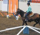 Jenna Beck of the Meadowbank 4-H Light Horse Club takes Fancy through the Jeopardy Trail obstacle course.  |  Karen Morrison photo