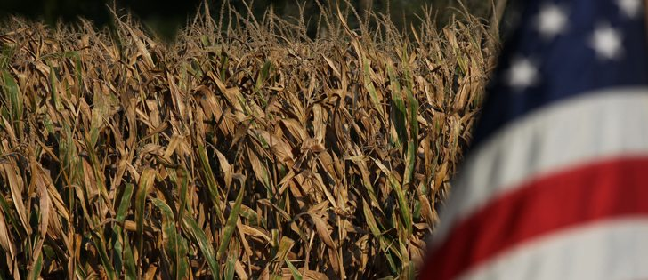 The U.S. Agriculture Department also reported corn and soybean stocks as of Sept. 1 at multi-year highs despite record usage of both commodities during the June, July and August time period. | File photo