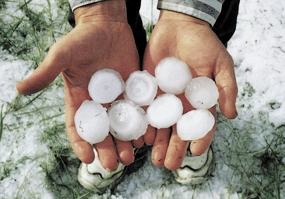 Hail caused less damage across the Prairies in 2017 than it did in 2016, according to the final report tabled Dec. 4 by the Canadian Crop Hail Association. | File photo