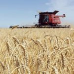 It is important to listen to the demands of customers abroad so that Canadian researchers and growers can make decisions accordingly, says a grain farmer and trade mission participant.  |  File photo
