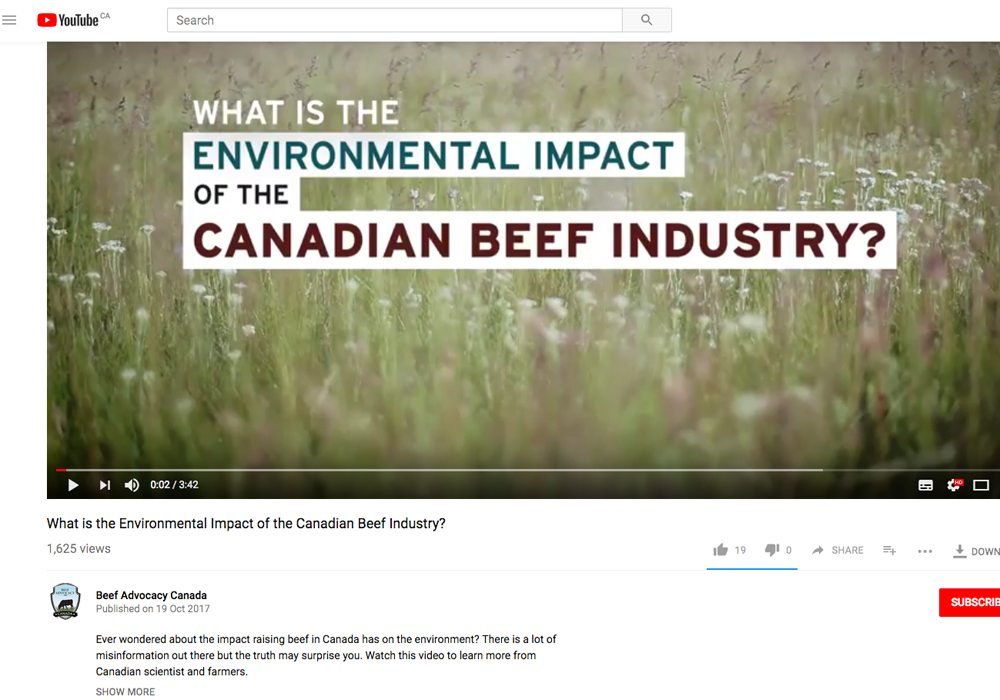 The Canadian Cattlemen's Association has produced a video explaining the environmental impact of Canada's beef industry. But there's one problem: hardly anyone has seen it. | Screencap via youtu.be/JDSoZBmdudg