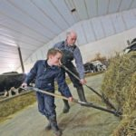 Allister, left, and Lauchie MacEachern work in their Debert, N. S., dairy barn.  | Nick Pearce photo