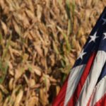 Two much anticipated reports from the United States Department of Agriculture (USDA) sent markets soaring and left traders speechless in the last trading day before the Easter holiday. | File photo