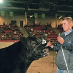 Sask. entry claims biggest prize at Calgary Stampede youth show