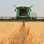 Harvest is ahead of schedule in Saskatchewan, with 39 percent of the crop in the bin, compared to the five-year average of 25 percent, according to the weekly crop report from Saskatchewan Agriculture released Sept. 6. | Barb Glen photo