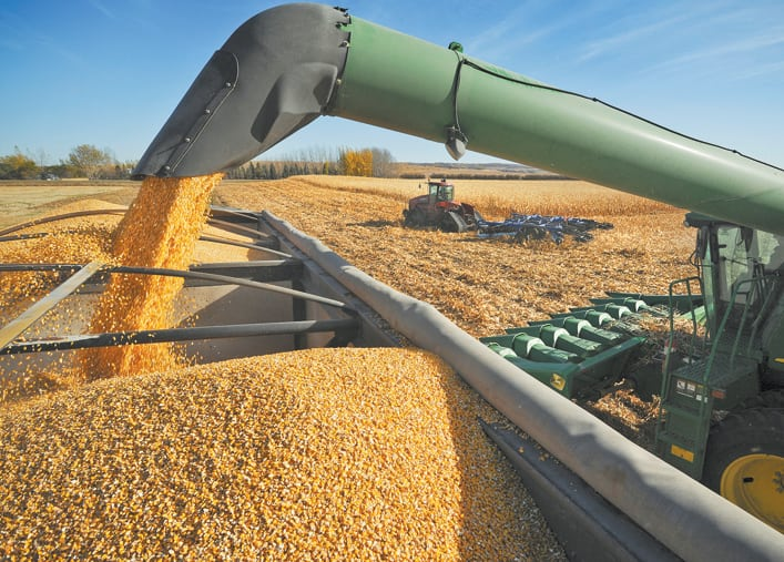 The U.S. Agriculture Department on Wednesday issued a surprise increase to its corn harvest forecast due to expectations of record yields in key production areas such as Illinois, Iowa, Nebraska and Indiana. | File photo