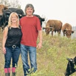 Alta. couple's Dexter cattle feed people, pets