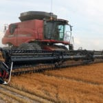 Lentil yields looking good, worries grow over peas