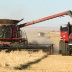 Saskatchewan farmers made the most of the warm and dry weather during the last week and were able to make significant harvest progress, according to the provincial crop report released Oct. 25. | William DeKay photo