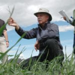 Weed expert receives soil conservation award