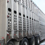 A survey to learn about animal welfare concerns related to livestock in transport has been launched by the National Farm Animal Care Council. | File photo
