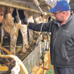 The proposed funding would compensate supply managed farmers for increased imports negotiated in recent trade agreements. Here, dairy farmer Henry Holtmann milks cattle on his farm near Rosser, Man., last fall.  |  REUTERS/Rod Nickel photo