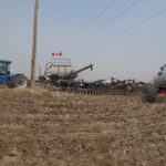 Less canola, more wheat expected from Statistics Canada