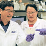Researchers make DON breakthrough