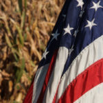 Many U.S. farmers fume at Washington, not Trump, over biofuel, trade policies