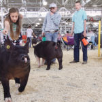 World Pork Expo is held each June in Des Moines, Iowa, hosting about 20,000 visitors over three days, including individuals and exhibitors from parts of the world where African swine fever has been found.  |  File photo