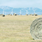 Hay prices skyrocket as drought continues