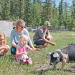 New farmers embrace small-scale production