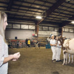Lorna Hamming judges the 4-H dairy show at the Chilliwack Fair. A former member, she gives back to the organization by judging and helping at shows.  |  Barbara Duckworth photo