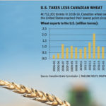 Wheat exports to U.S. fall by half