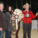 Farmfair International - Friday results