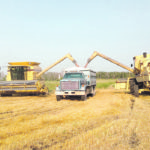 Farm profitably improving through the use of older equipment