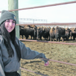 Young bison producer has deep roots