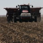 Potato acres expected to plummet