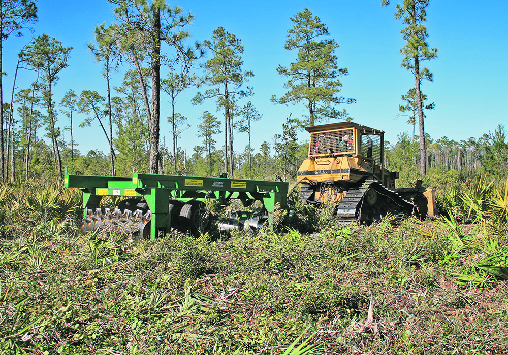 RanchWorx initiated its aerator design work 47 years ago in Florida palm and Texas mesquite because those were the two toughest pasture invasive woody environments. |  RanchWorx/David Benjamin photo