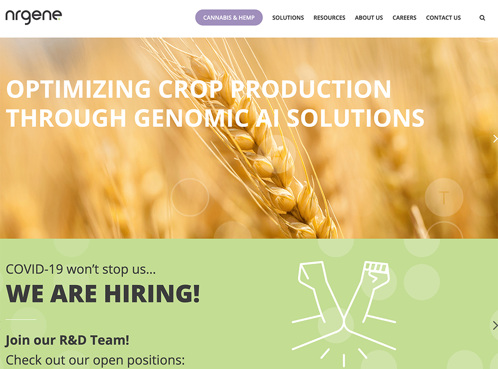 NRGene is a genomics artificial intelligence company that provides ready-to-use technologies that support agricultural research, plant breeding and animal husbandry. | Screencap via nrgene.com