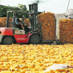 Hopes for Chinese corn imports questioned